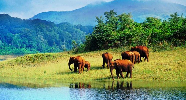 Neyyar Animals Refuge