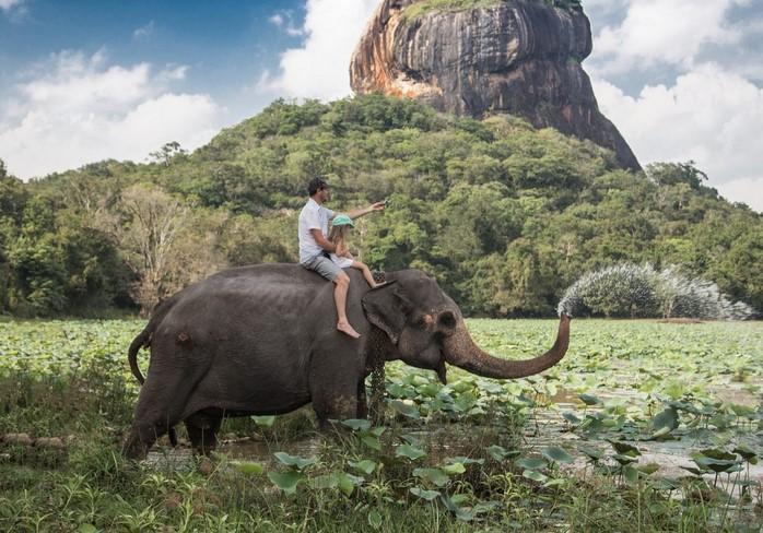 Animals Journey & Animals Vacation in Indian