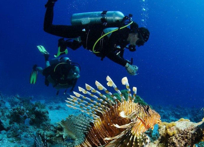 Scuba diving Plunge Location Within Southern The african continent — Rugged These types of